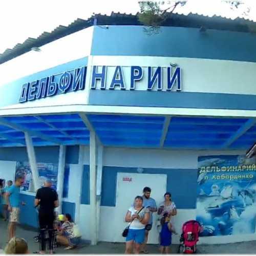 Дельфинарий, Russia