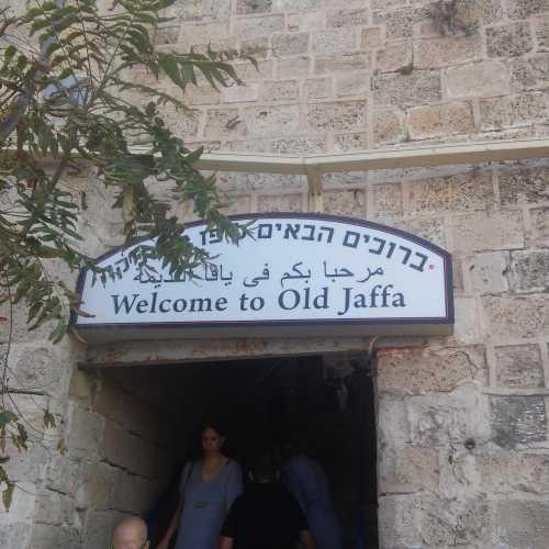 Haifa