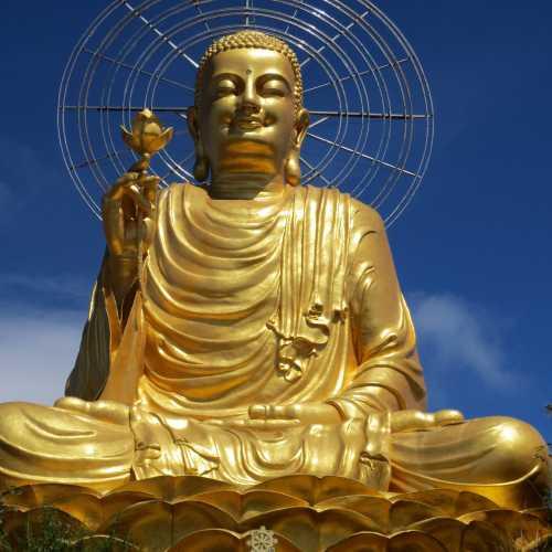Бронзовая статуя Будды Шакьямуни. Она была построена в 2002 году на одном из самых высоких мест Далата, что дает возможность наблюдать ее из разных уголков города. Высота бронзового Будды весом в 1250 килограмм достигает 24 метра