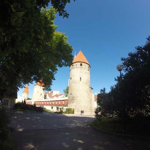 Стены старого Таллина