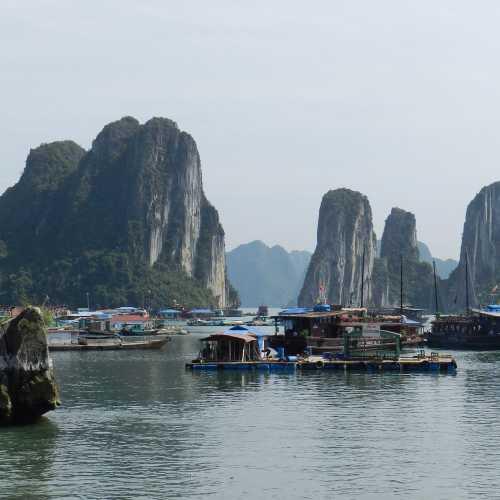 Бухта Хало́нг, Вьетнам