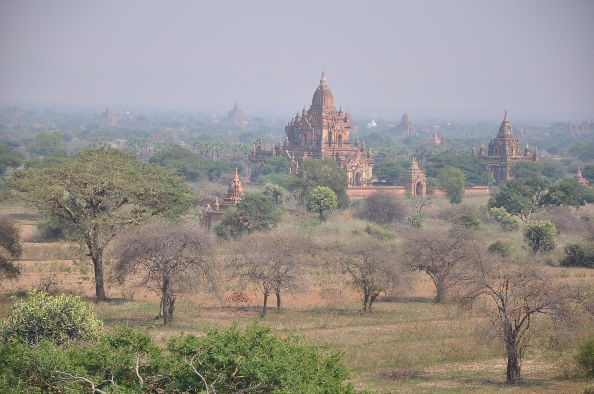 елена саратов фото мьянма