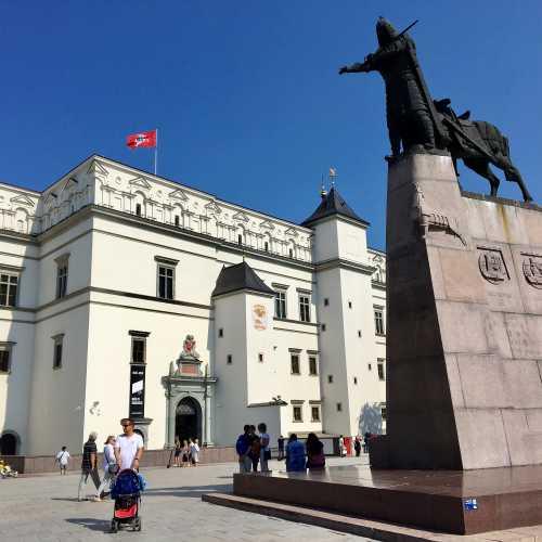 Памятник князю на фоне дворца