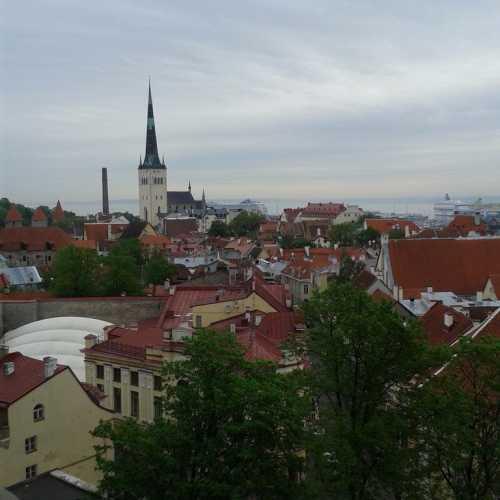 Сказочный городок — вид на старый город Таллин