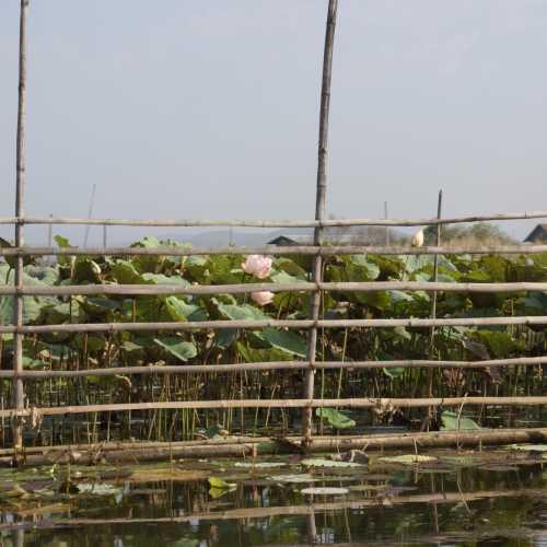 Inle Lake, Myanmar Burma