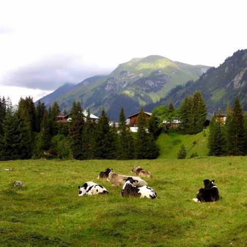 Лех, Альпы