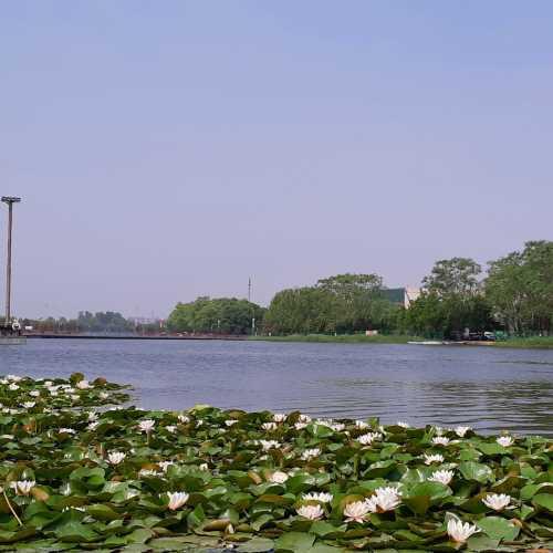 Олимпийский парк в Пекине