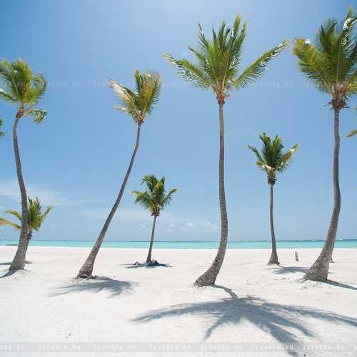 Пальмы на Хуании