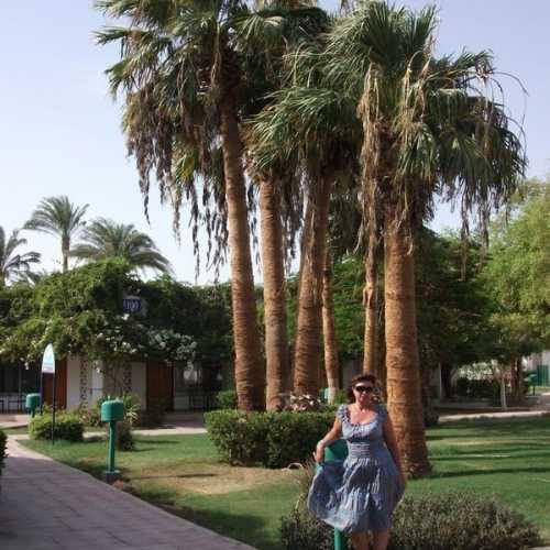 Safaga, Egypt