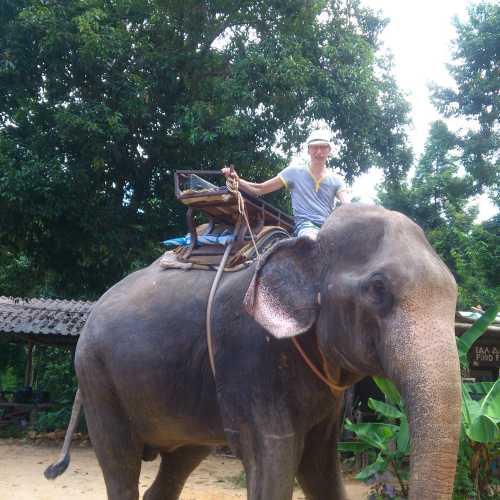 Экскурсия на слонах.