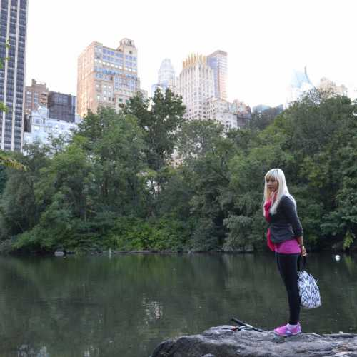 Центральный парк, Нью-Йорк)