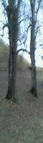 Великие курганы
