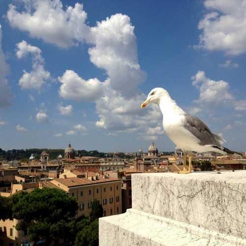 Monte Capitolino<br/> Roma