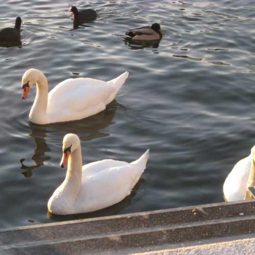 Стокгольм. (07.01.2012)