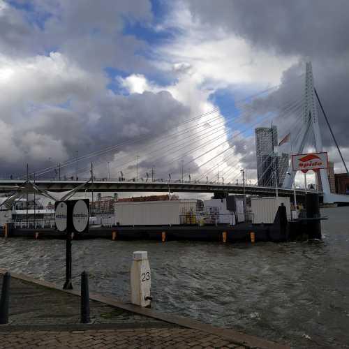 Роттердам. (17.03.2019)