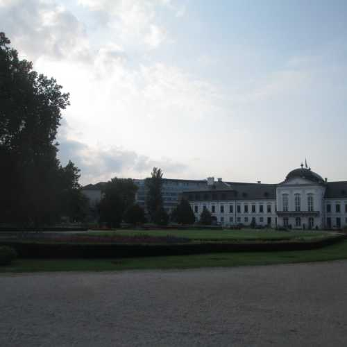 Братислава. Парк у Дворца Грассалковича. (17.09.2014)