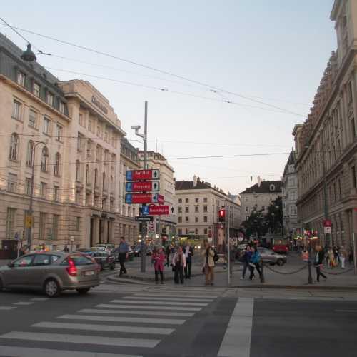 Вена. Ринг. (17.09.2014)