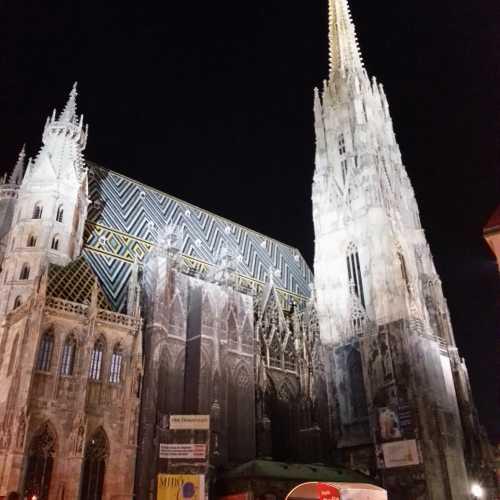 Вена. Собор Святого Стефана. (17.09.2014)