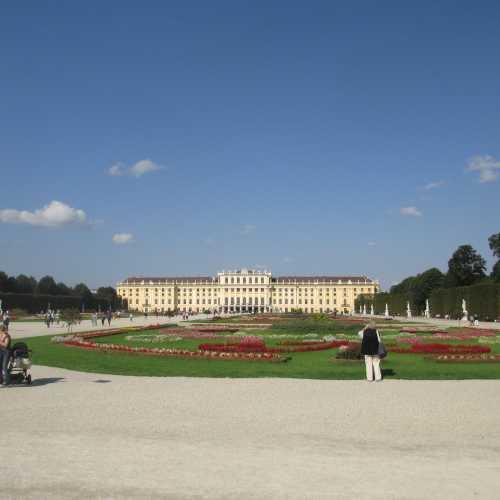 Вена. Парк Шёнбрунн. (17.09.2014)