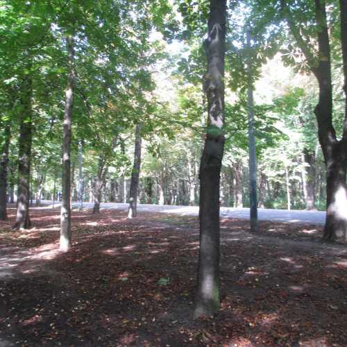 Вена. Каштановая аллея в парке Пратер. (18.09.2014)