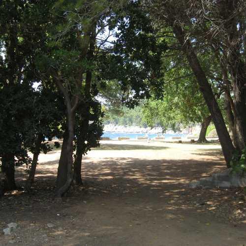 Дубровник. Остров Локрум. (июль 2012)