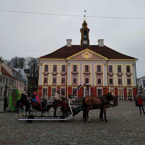 Тарту. Ратушная площадь. (21.12.2019)