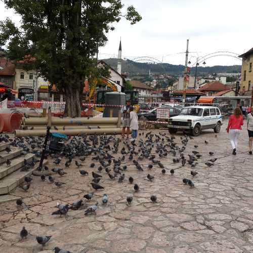 Сараево. Площадь Башчаршия. (07.09.2015)