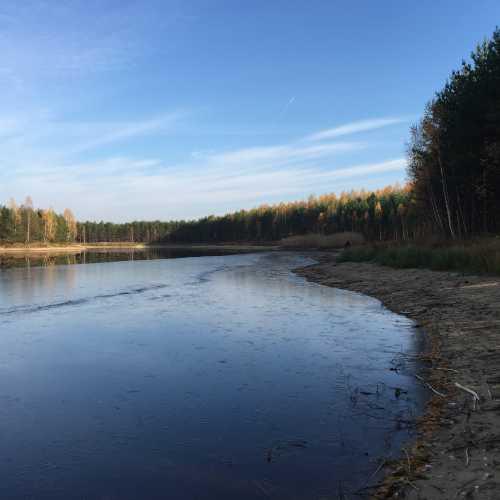 Налибокская пуща, Беларусь