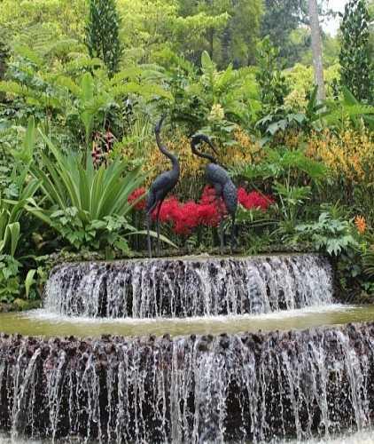 Батумский ботанический сад, Грузия