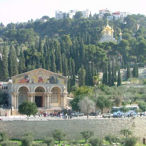 Гефсиманский сад, Israel