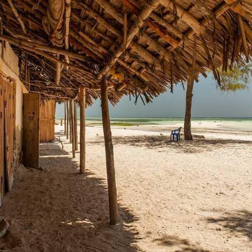В тени… ocean africa zanzibar #африка #отдыхаемхорошо #занзибар #пляж #песок