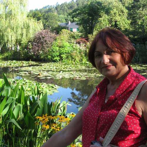 Лілії в озерах парку садиби Клода Мане в Жіверні