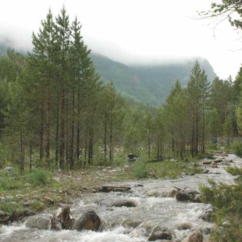 горная река Кынгырга (с. Аршан). 2015 г.