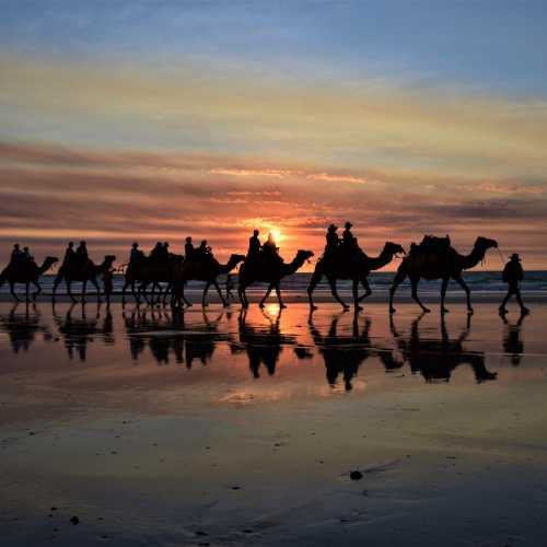 Cable Beach — 22 km stretch of white sand beach on the eastern Indian Ocean and the name of the surrounding suburb in Broome, Western Australia.