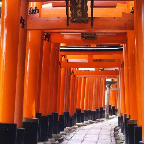 Fushimi Inari-taisha, Japan