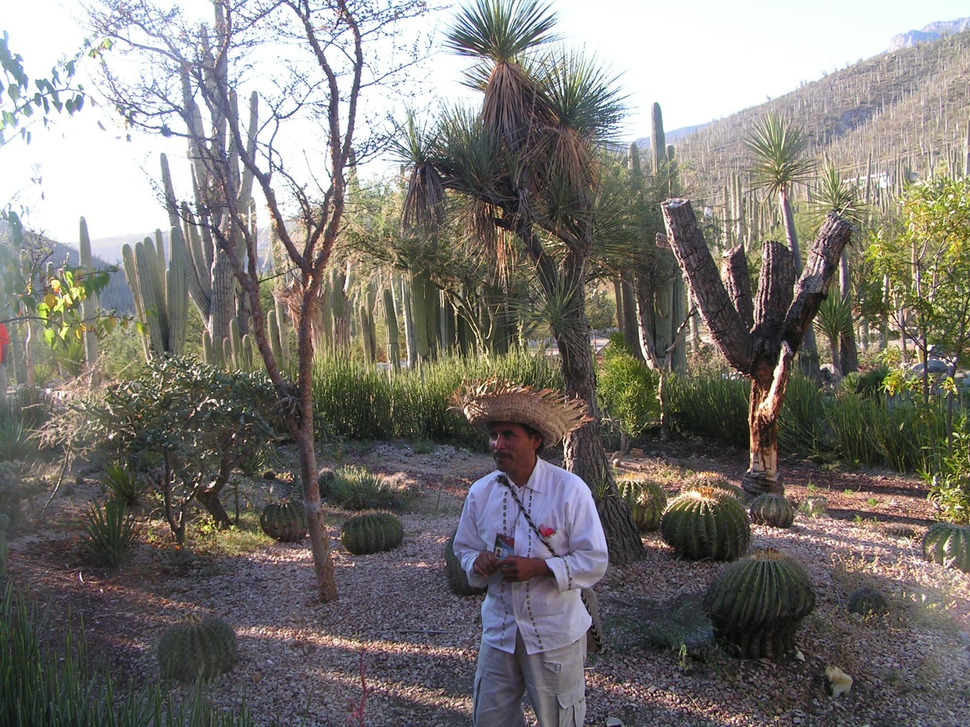 Заповедник кактусов