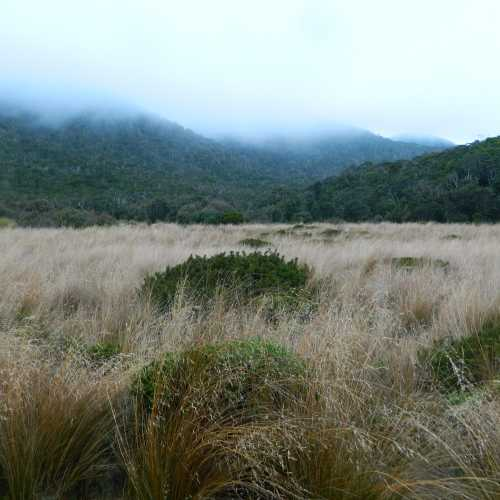 Heaphy Track, New Zealand