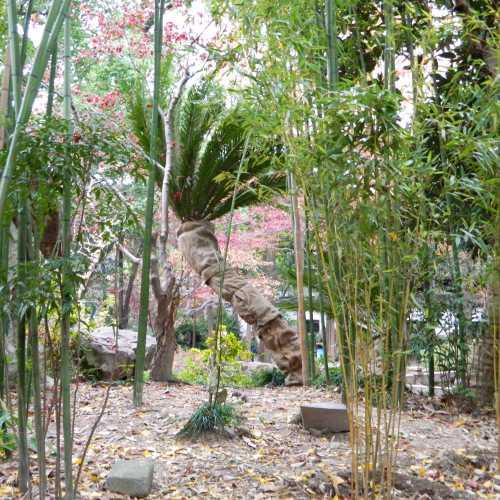 сады Юй Юань, Китай