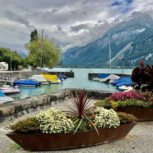 Бриенц, Switzerland