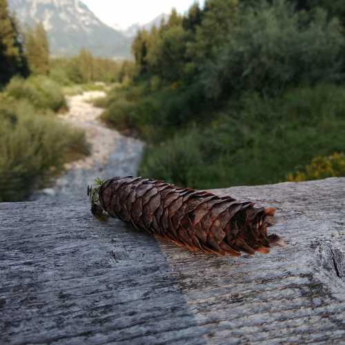 Альпийская Австрия. Поселок Хольц