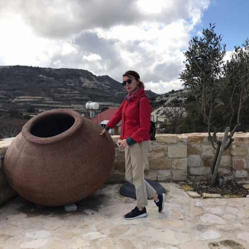 на Винодельне в горах Троодос, Кипр, февраль 2018