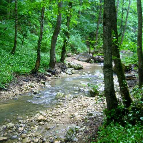 Ущелье реки Мишоко