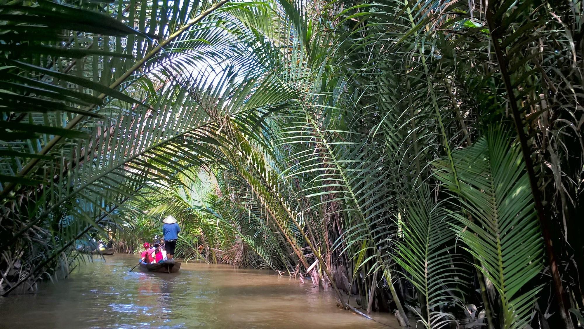 это дельта реки де меконг фото представьте, что