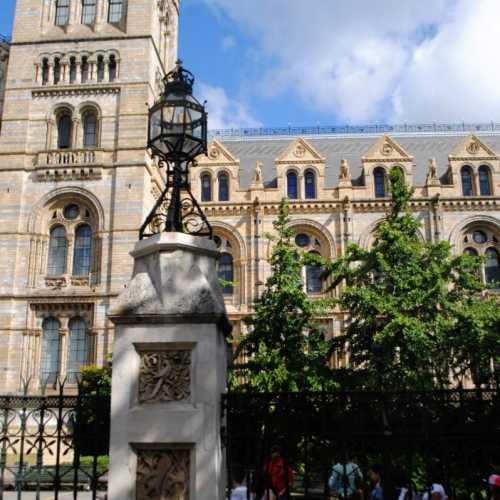 Музей естественной истории (Natural History Museum) или по-другому музей естествознания —один из самых крупных и знаменитых музеев Лондона. Это огромный и величественный музей, собравший в своей коллекции более 70 миллионов экспонатов —растений, ископаемых, минералов и животных со всего света.