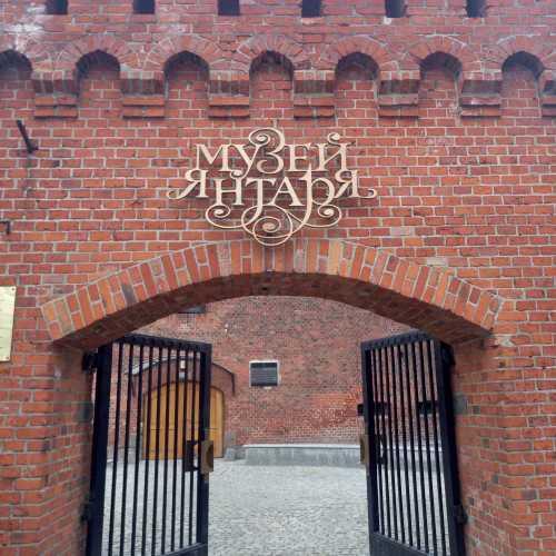 Музей янтаря, Россия