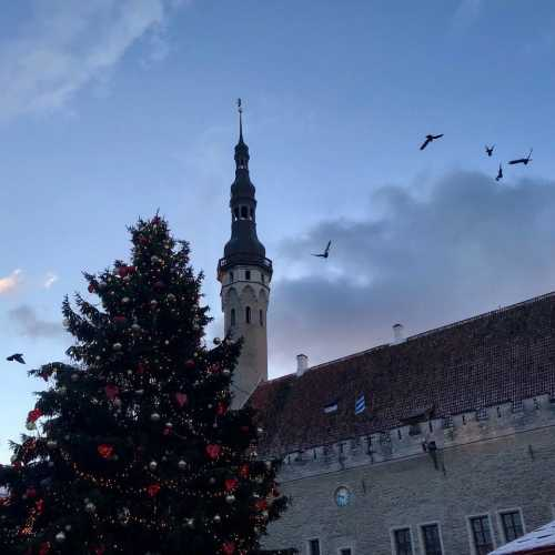 Рождество 2018 в Таллине.