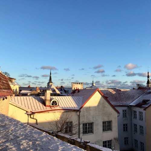 Виру, Таллин