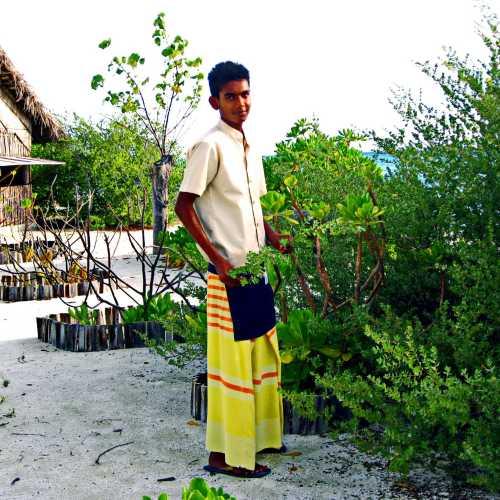 Мальдивские о-ва