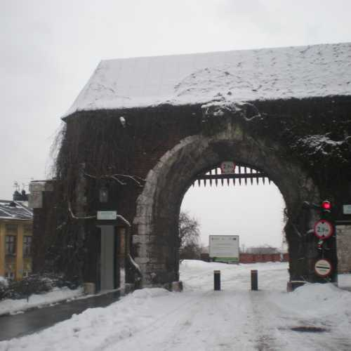 Castello di Wavel