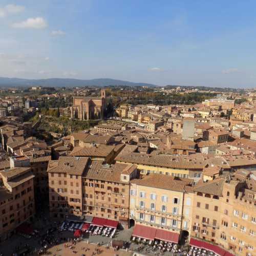Вид на город с башни Торре-дель-Манджо, Сиена